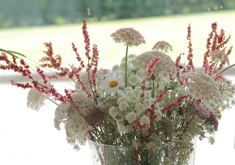 floressilvestres