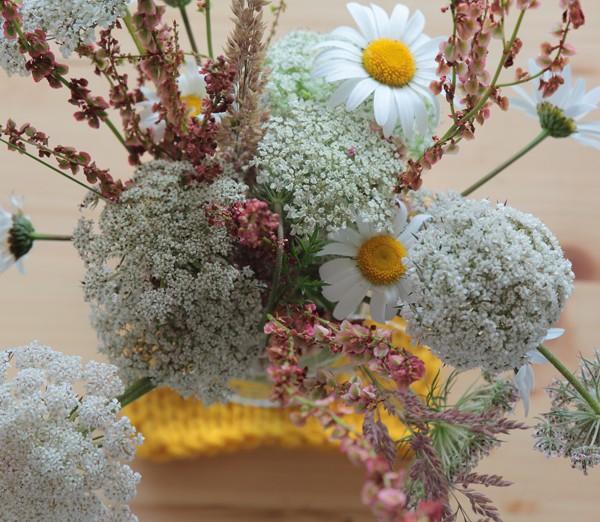floressilvestres2