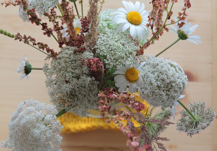 Decorar con flores silvestres comparte mi moda - Tipos de flores silvestres ...